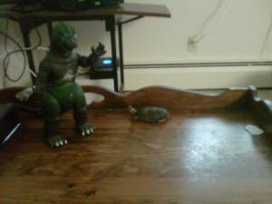 Shelvin vs Godzilla
