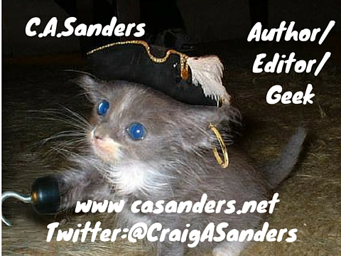 casanders pirate kitten