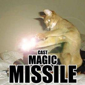 dnd cat magic missile