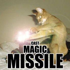 dnd cat magic missile