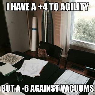 dnd cat vacuum