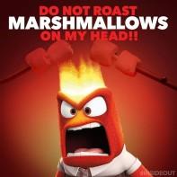 roast-marshmallows