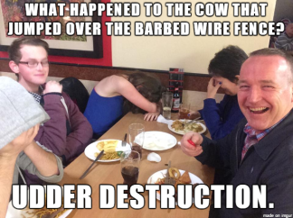 dad joke cow udder destruction