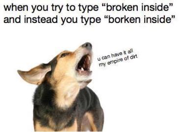 doge-borken-inside